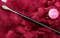 MAC Cosmetics優惠碼: 選購任何產品 滿$300 – 送217S經典暈染掃